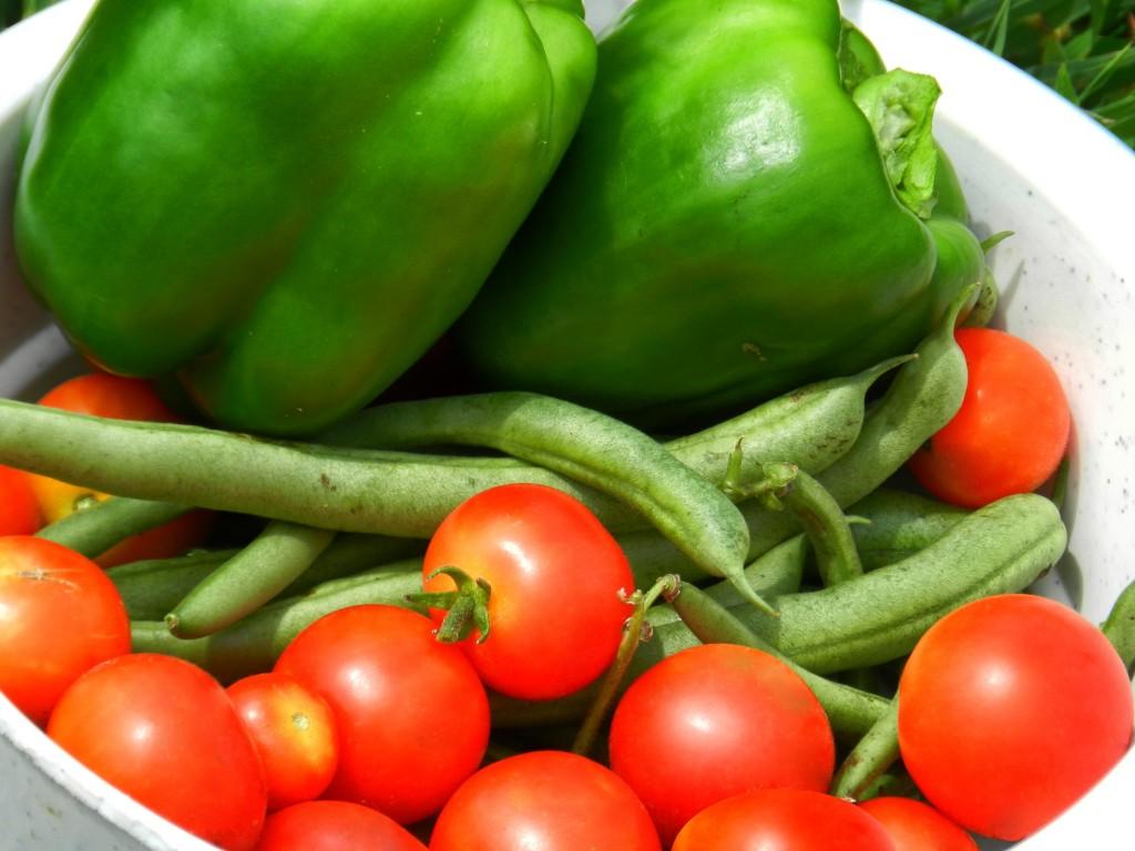 l'alimentació mediterrània, model d'alimentació saludable