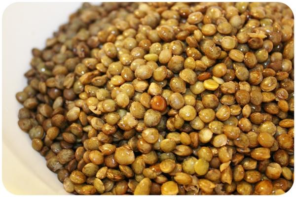 La Llenilla és de fàcil digestió i conté un 25% de proteïna.