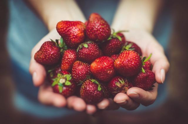 fresas par comedores escolares ecológicos