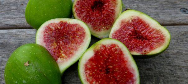 Fruites de tardor als menjadors escolars