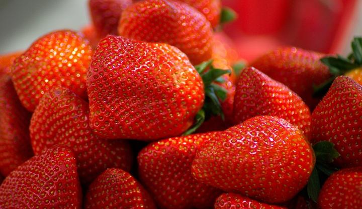 Fruits del Bosc: Estiu fresc!